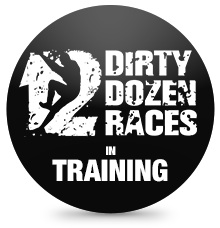 DDR in training badge